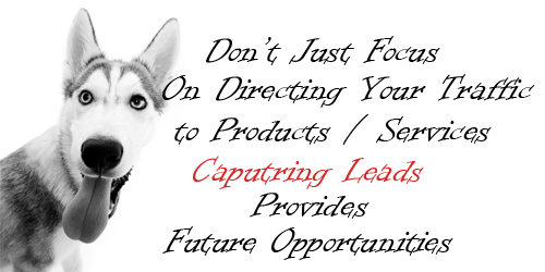 Capturing Leads